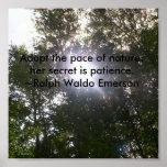 Poster de la naturaleza