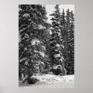 Poster de la naturaleza del paisaje del navidad de