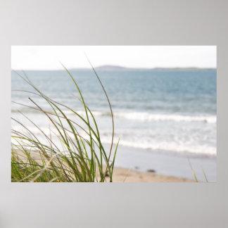 poster de la opinión de la hierba de la duna de ar