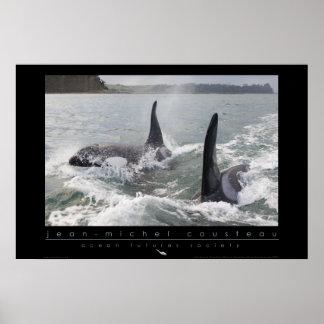 Poster de la orca de Nueva Zelanda