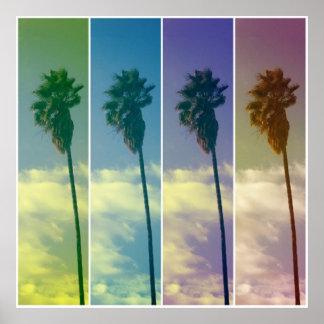 Poster de la palmera