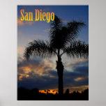 Poster de la palmera de San Diego