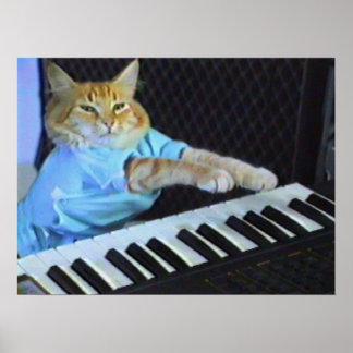 ¡Poster de la pared del gato del teclado! Póster