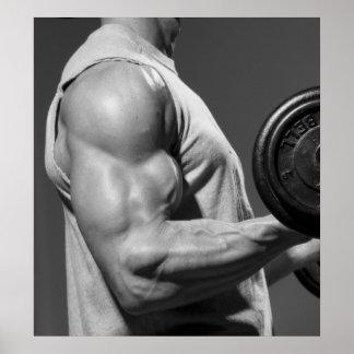 Poster de la pared del gimnasio del bíceps que se