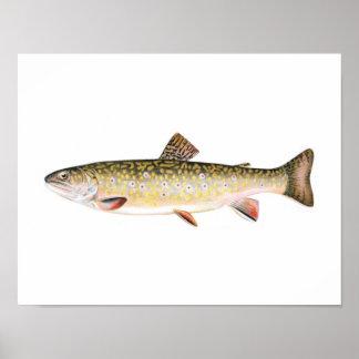Poster de la pesca - pescado de la hembra de la tr