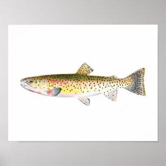 Poster de la pesca - pescado de la trucha de la mo