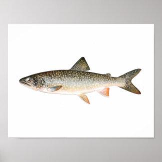 Poster de la pesca - pescado de la trucha de lago