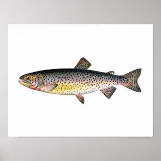 Poster de la pesca - pescado de la trucha de Tahoe