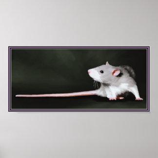Poster de la pintura linda de la rata