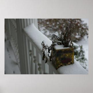 Poster de la planta de nieve