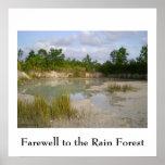 Poster de la protección de la selva tropical póster