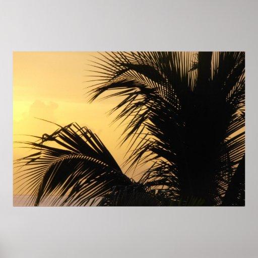Poster de la puesta del sol de la palmera