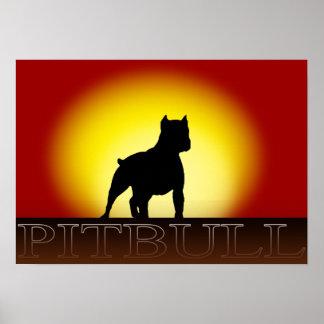 Poster de la puesta del sol de Pitbull