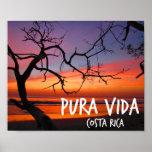 Poster de la puesta del sol de Pura Vida Costa Ric Póster
