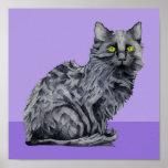 Poster de la púrpura del gato negro