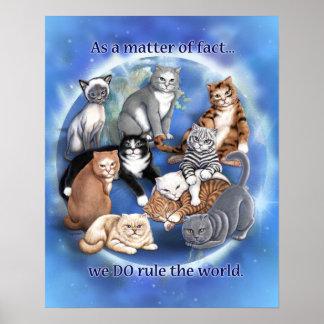 Poster de la regla de los gatos