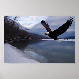 Poster de la reserva de Chilkat Eagle