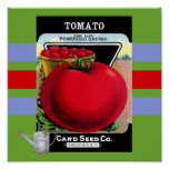 Poster de la semilla del tomate del vintage