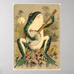 Poster de la serenata de la rana
