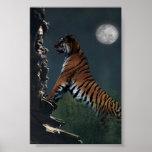 Poster de la subida de los tigres