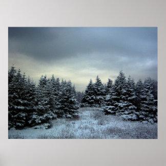 Poster de la tormenta del invierno