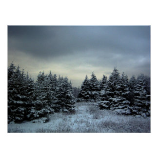 Poster de la tormenta del invierno póster