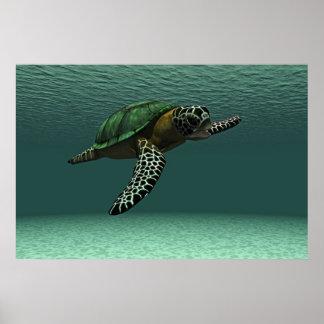 Poster de la tortuga de mar