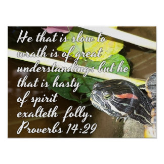 Poster de la tortuga - verso de la biblia del