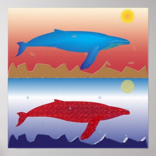Poster de las ballenas