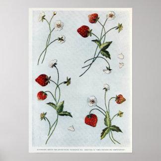 Poster de las fresas de Edwardian