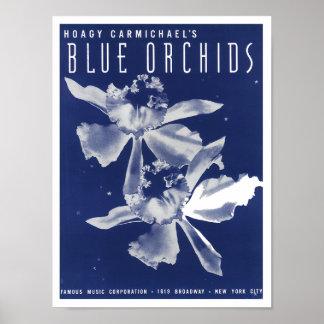 Poster de las orquídeas azules