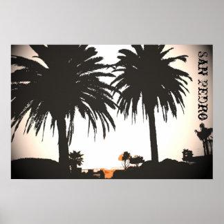 Poster de las palmas reales de San Pedro