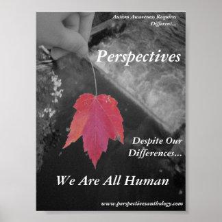 Poster de las perspectivas