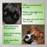 Poster de los animales de la ayuda