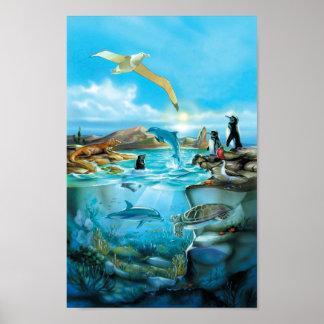 Poster de los animales de las Islas Galápagos