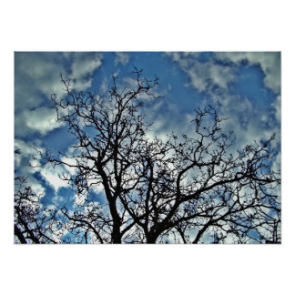 poster de los árboles