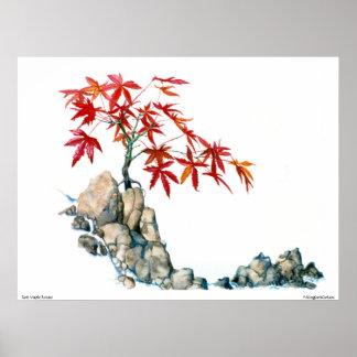 Poster de los bonsais del arce rojo de PMACarlson