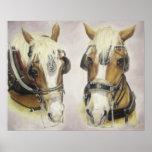 Poster de los caballos de proyecto