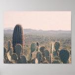 Poster de los cactus el   de Arizona