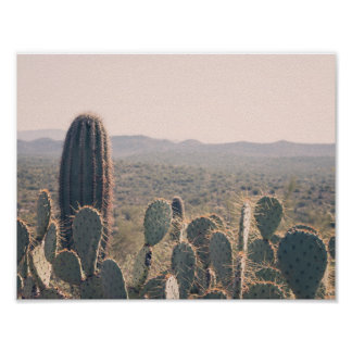 Poster de los cactus el | de Arizona