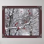 Poster de los cardenales del invierno
