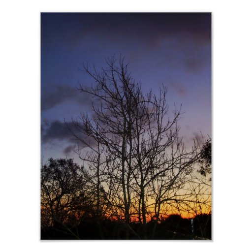 Poster de los cielos de la oscuridad