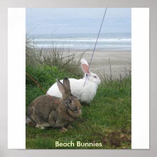 Poster de los conejitos de la playa