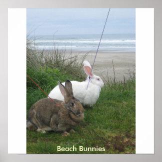 Poster de los conejitos de la playa - modificado p