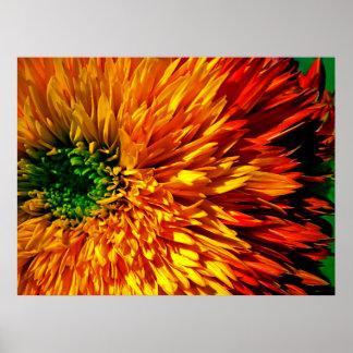 Poster de los fuegos artificiales de la flor