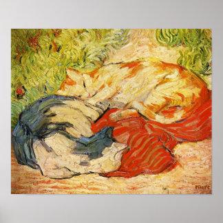 Poster de los gatos de Franz Marc