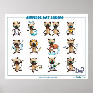 Poster de los gatos siameses del zodiaco