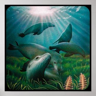 Poster de los leones marinos