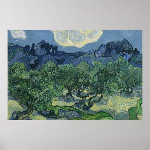 Poster de los olivos
