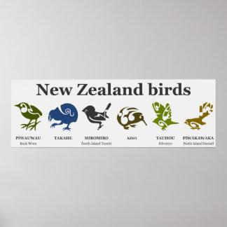 Poster de los pájaros de Nueva Zelanda